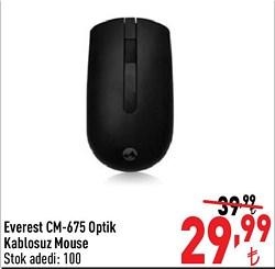 Everest CM-675 Optik Kablosuz Mouse